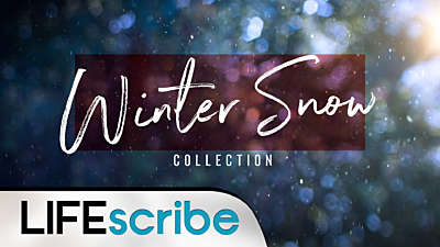 Winter Snow Collection