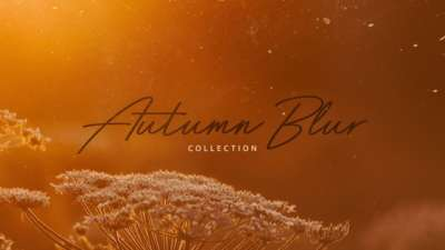 Autumn Blur Collection