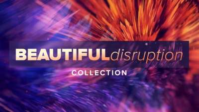 Beautiful Disruption Collection