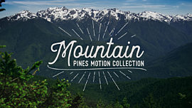 Mountain Pines Collection
