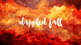 Dappled Fall Collection
