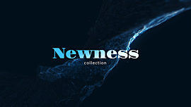 Newness Collection