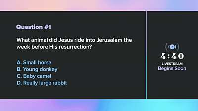 Easter Foil Trivia Countdown