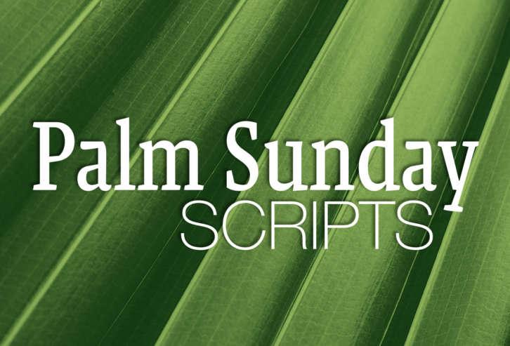 Palm Sunday Scripts