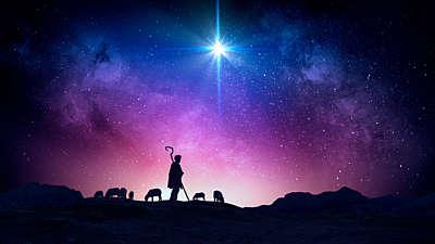 Christmas Night Nativity 7