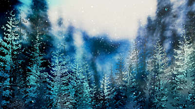 Christmas Woods 10