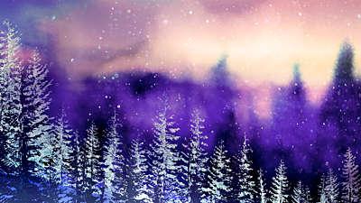 Christmas Woods 9