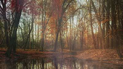 Deep Autumn Pond