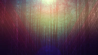 Fall Forest 03