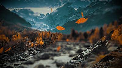 Falling Autumn 1