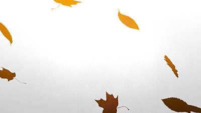 Painted Autumn 05