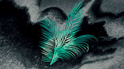 Palm Sunday Volume 5 Background 3