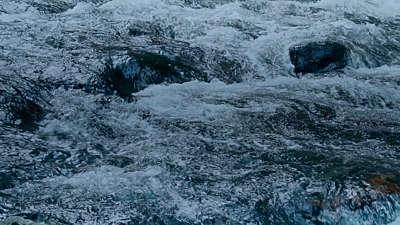 River Wild 1