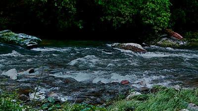 River Wild 10