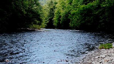 River Wild 11