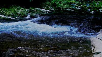 River Wild 13