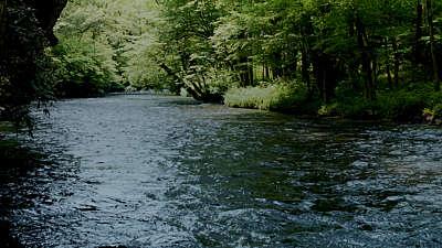 River Wild 16