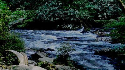 River Wild 18