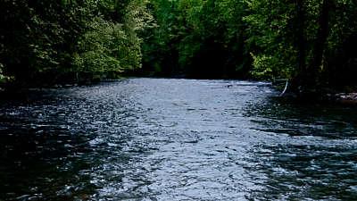 River Wild 6