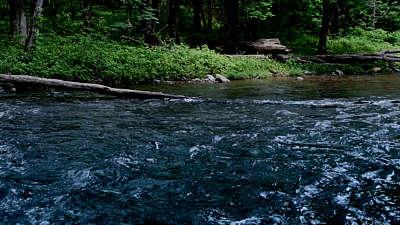 River Wild 7