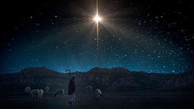 Starry Night Nativity 5