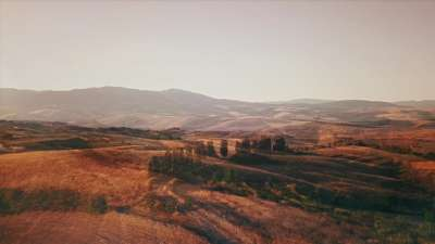 The Hills Fields Alt