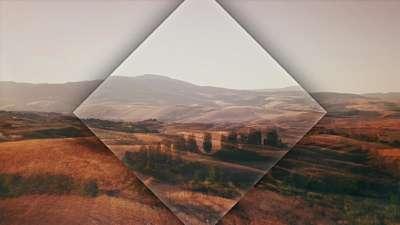 The Hills Fields