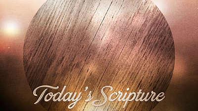 Woodgrain Scripture