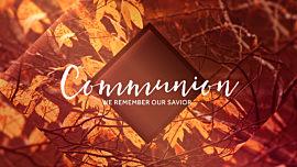 Autumn Oasis Communion Still