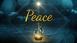Christmas Peace Loop Vol 5