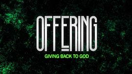 Disheveled Offering