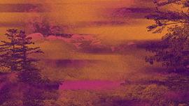 Fall Reflections 02