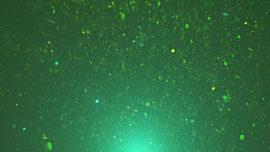Glimmer Dust 28