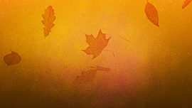 Painted Autumn 02