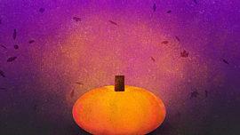 Painted Autumn Pumpkin 03