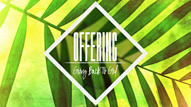 Palm Sunday Offering