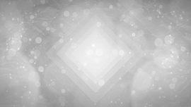 Silver Snow 03
