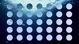 Underwater Bubbly Alt