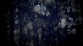 Winter Snow 18