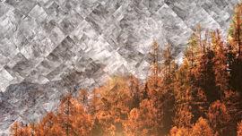 Colorful Fall 4