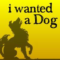 I Wanted a Dog
