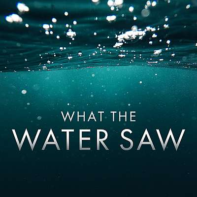 What the Water Saw