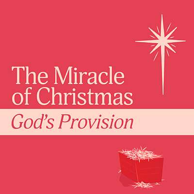 The Miracle of Christmas: God's Provision