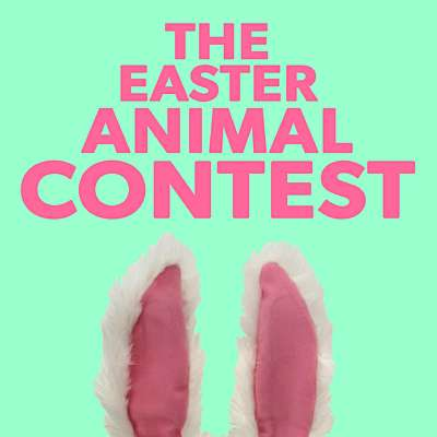 The Easter Animal Contest