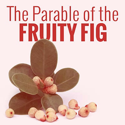 The Parable of the Fruity Fig