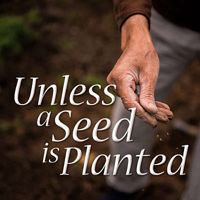 Unless A Seed Is Planted