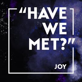 """""""Have We Met?"""" Joy"""