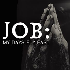 Job: My Days Fly Fast