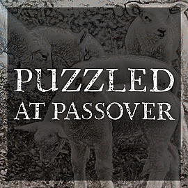 Puzzled at Passover