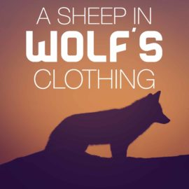 A Sheep in Wolf's Clothing thumbnail